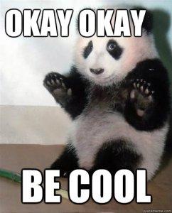 Be Cool Panda