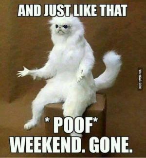 Weekend Gone