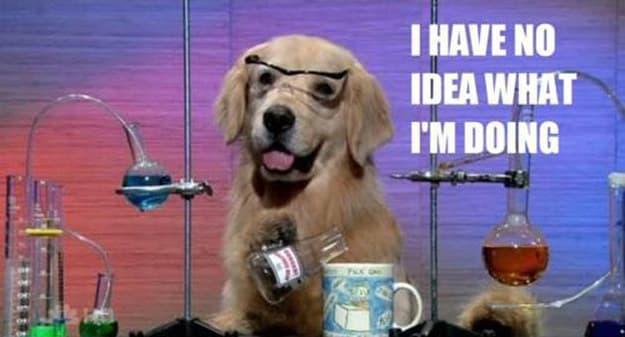 Impostor Syndrome Dog