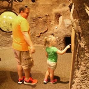 Audobon Zoo sm