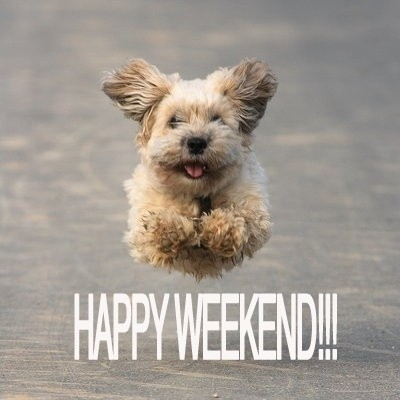 happy-weekend-quote-12-picture-quote-1