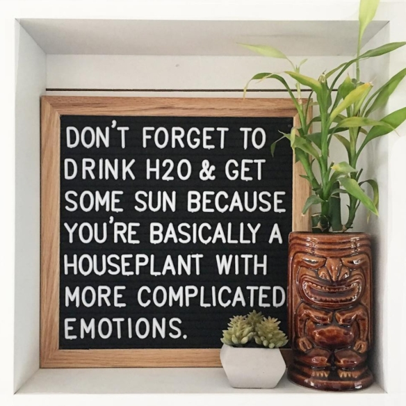 SK Motivation - Houseplant with Emotions