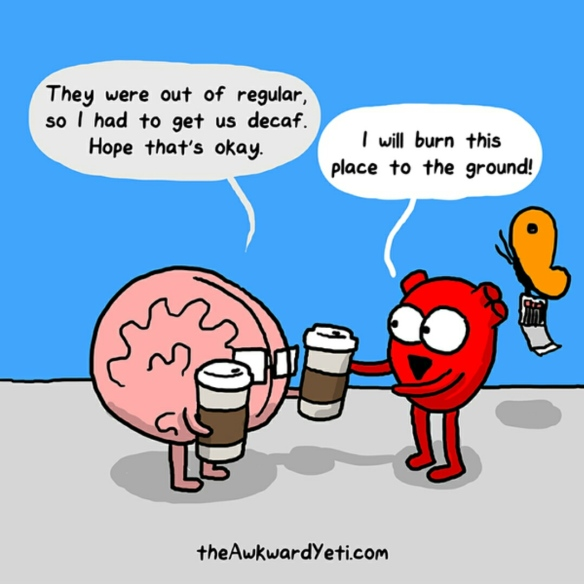 The Awkward Yeti - Decaf