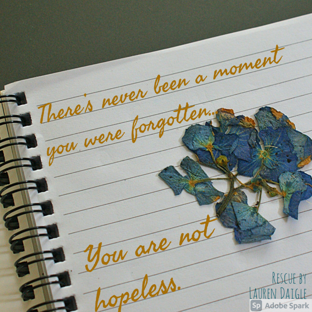 There's never been a moment You were forgotten You are not hopeless -Lyrics for Rescue by Lauren Daigle
